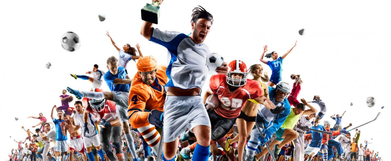 Rank One Sport Plus Health